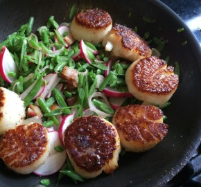 Pan Seared Scallops, Haricot Vert, Easter Radish, Bacon, Sorrel
