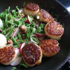Pan Seared Scallops, Haricot Vert, Easter Radish, Bacon,Sorrel